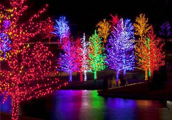 American Lighting Christmas Lights
